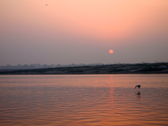 Sunrise on the Ganges with bird in flight
